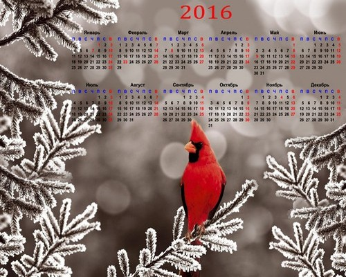 1448347165_2016-calendar-template-psd-with-a-beautiful-bird-1