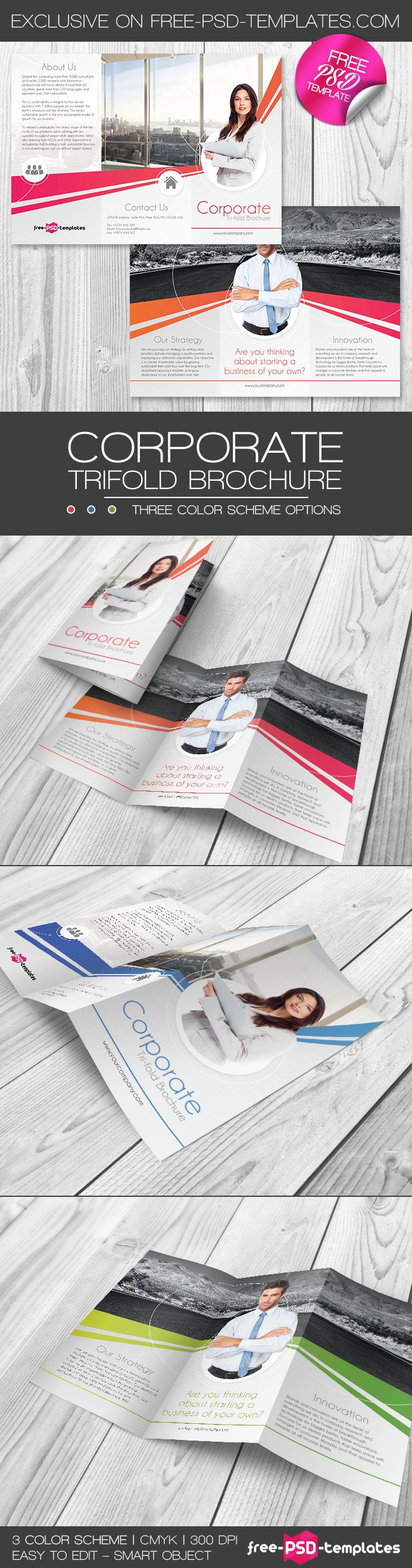 Bigpreview_corporate-free-psd-trifold-brochure-template