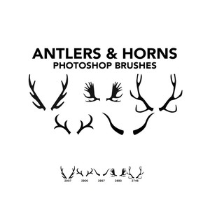 antlers-horns-brushes.normal