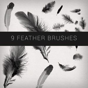 feather-brushes.normal