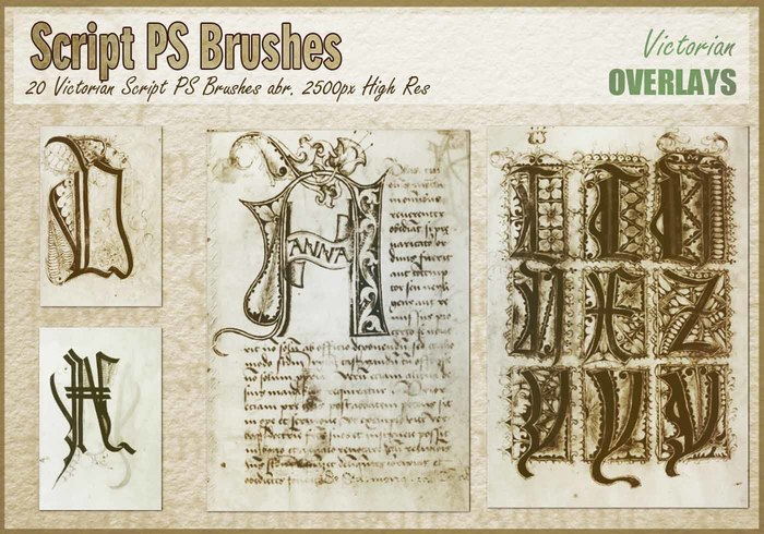 victorian-script-ps-brushes-abr