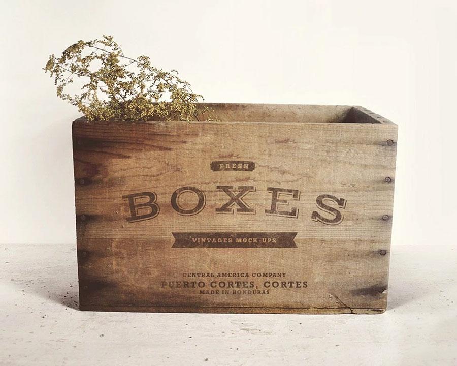 01_vintage-boxes-logo-free-mockup