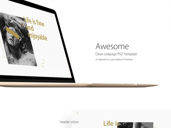 clean-onepage-template-580x435