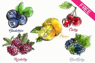 FREE Drawn Fruit and Berries IN PSD