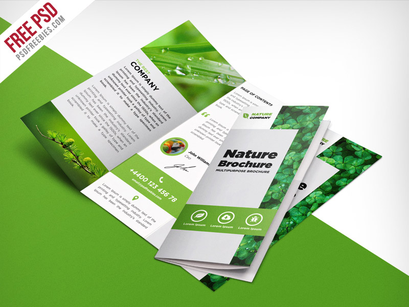 Free PSD TriFold BiFold Brochures Templates For Promoting - 3 folded brochure template