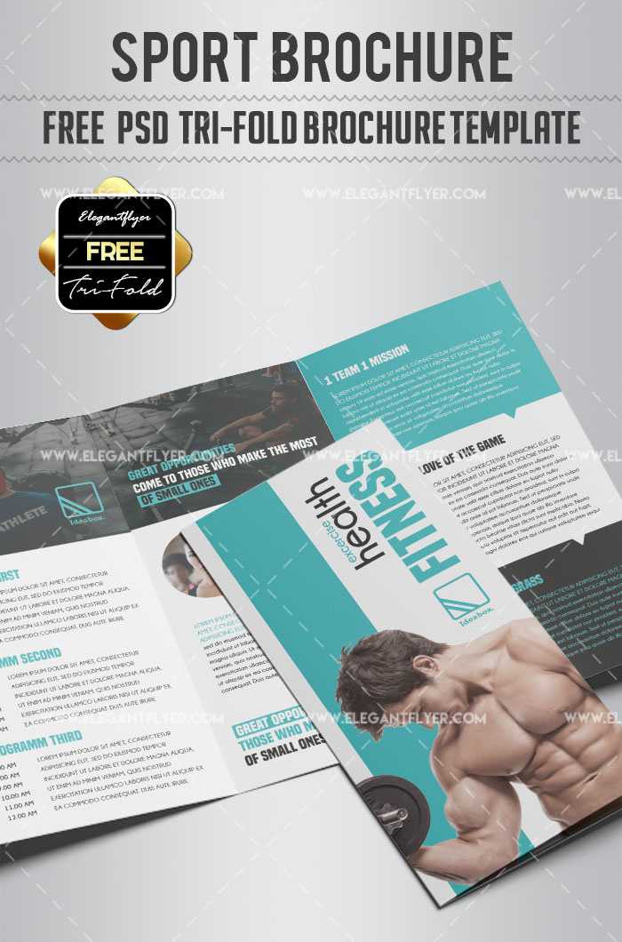 45 Free Premium Best Psd Brochure Templates Free Psd Templates