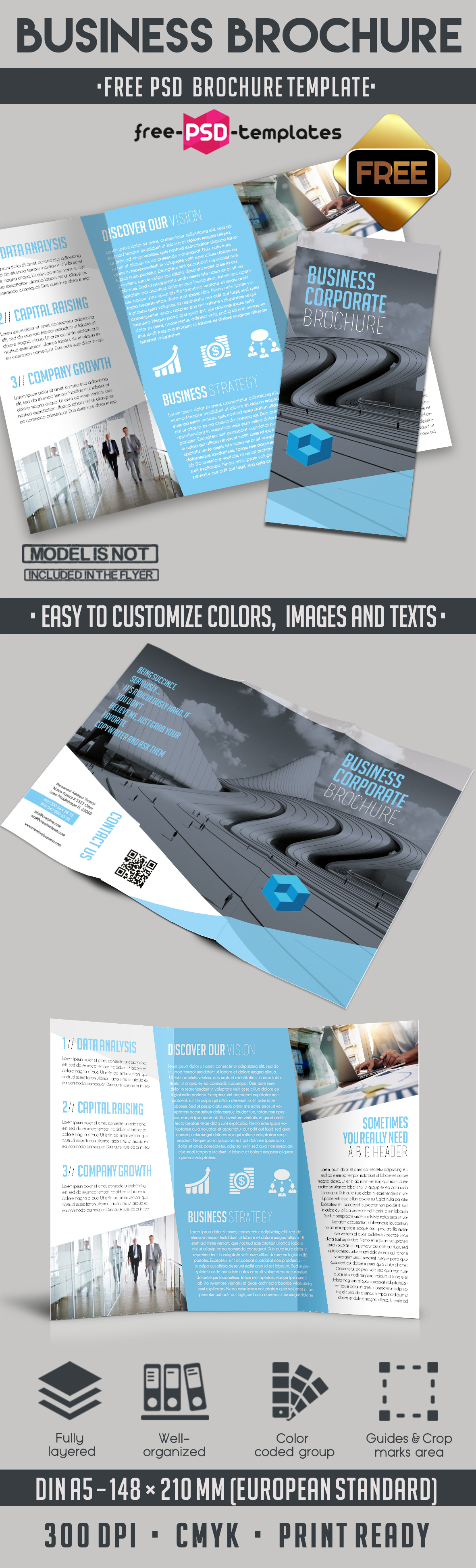 free corporate brochure templates - business free tri fold brochure template free psd templates
