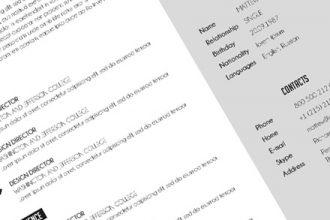 Free Mono Resume psd Template