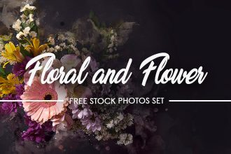 12+ Black Floral and Flower – Free Stock Photos Set