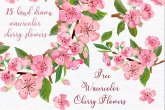 Free Cherry Flowers Watercolor