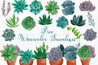 Free Succulents Watercolor