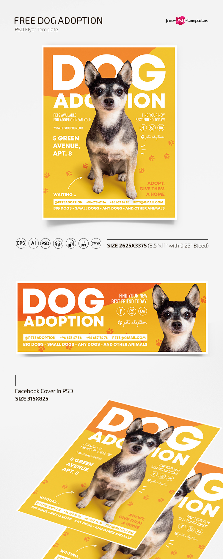 Pet Adoption Flyer Template Free from free-psd-templates.com