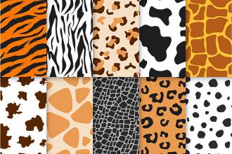 Free Animal Skin Patterns Set