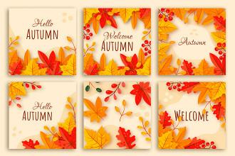 Free Autumn Background Set